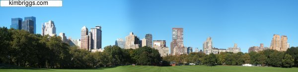 NYC Panoramic Photo