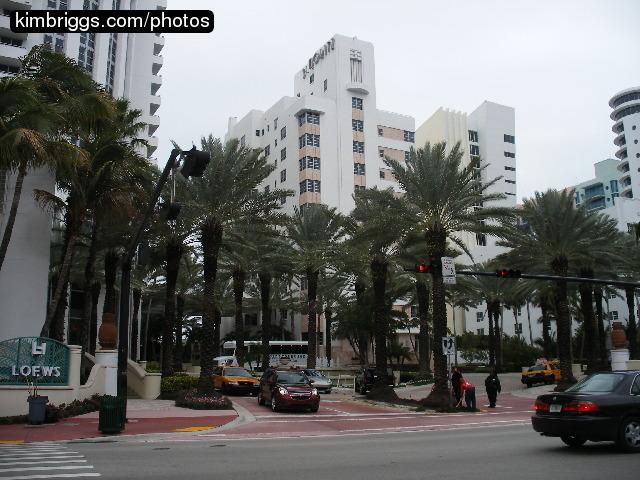 Loews Miami Beach Room Service Menu