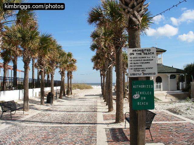 Permalink to Neptune Beach Fl