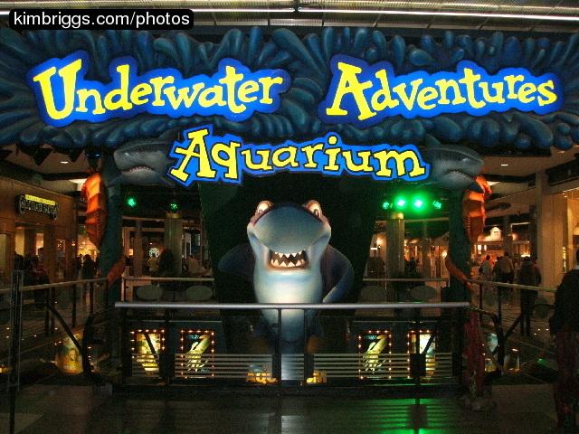 Underwater Adventures Aquarium Photos Mall Of America